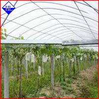 PP Spunbond Nonwoven Agriculture Crop Cover Cloth , Non Woven Weed Control Fabric