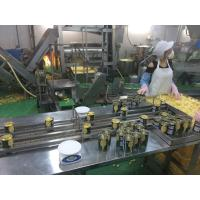 Buy cheap Full Automatic Dried Pineapple Processing Machinery Energy Saving Easy Operation from Wholesalers