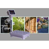 China IP68 Design Platform Weighing Scale Size 300mm*400mm, LED Display Waterproof Scales factory