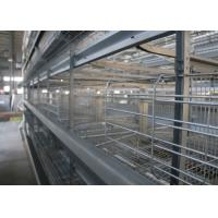 China High Efficiency Poultry Layer Cage Poultry Control Shed Farm Equipment factory