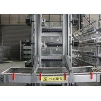China High Efficiency Automatic Egg Collection System / Egg Farm Machinery factory