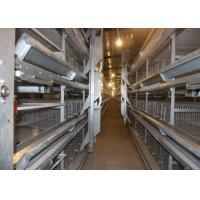 China Hot Dip Galvanized H Type Layer Chicken Cage Simple Structure 15-20 Years Lifespan factory