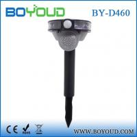 Quality 4 in 1 solar speaker loud bird scare with Led wholesale