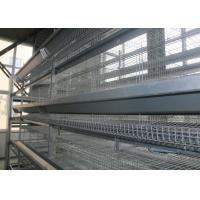 China 3 Tiers Chicken Layer Equipment / Galvanized Chicken Farm Poultry Equipment on sale
