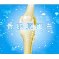 Buy cheap Hydrolyzed Collagen Type II (Edible Level),Chicken Bone Collagen,chicken collagen type II from Wholesalers
