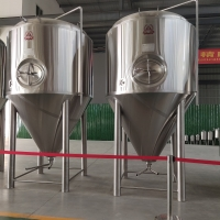 China 1000L 2000L 3000L 4000L 5000L Beer Conical Fermentation Tank Stainless Steel 304 Fermenter factory