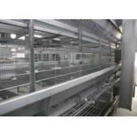 China Hot Galvanized Automatic Egg Collection Machine 15-20 Years Lifespan factory