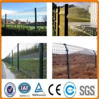 Buy cheap PVC/Powder Coated Welded Wire Mesh Fence/Welded Wire Fence Factory Price from Wholesalers