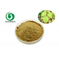 China Pure Natural Epimedium Icariin Herbal Extract Icariin 60% For Enhancing Male Sexuality factory