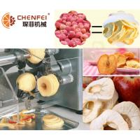 Buy cheap Easy Operattion SS304 Dried Fruit Production Line For Freeze Dried Apple Pear from Wholesalers