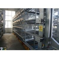 China H Type Egg Laying Chicken Cages Customized Size Scientific Designed factory