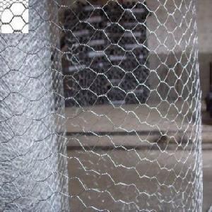 China Hexagonal Wire Netting factory
