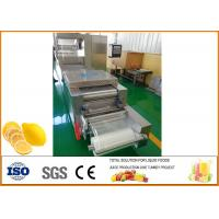 Quality Freeze-drying Lemon Processing Machinery Silver Color CFM-FD-200 for sale