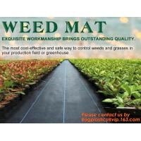 China China Supplier Anti Weed Mat Weed Control Mat 100gsm PP Landscape Fabric Weed Barrier,Weed block mat keep damp and tempe factory
