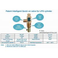 Quality Intelligent Quick on valve for LPG cylinders wholesale