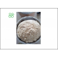 China White Powder Pyridaben 20%WP Tick Insecticide factory