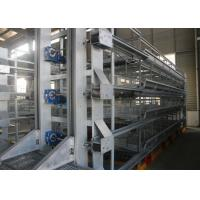 China High Tech Poultry Cage  System / Cage Holding Poultry Easy Daily Management factory