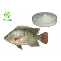 Buy cheap Fish Skin Scale Collagen Powder Type 2 Chicken Cartilage Collagen For Skin from Wholesalers