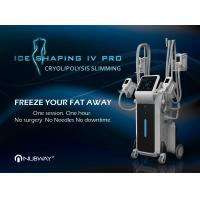 Buy cheap Professional best price 4 handles cavitation cryolipolysis fat removal machine 2019 from Wholesalers