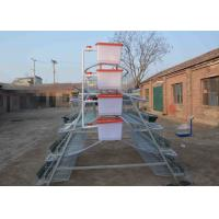 China Professional Galvanized Chicken Breeding Cages , Poultry Laying Cages 2.15*2.4 *1.95m Size on sale