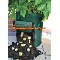 China Horticulture, NURSERY, PLANTER, SEED, PLASTIC GROW BAGS, HYDROPONICS, FLOWERPOTS, BLACK factory