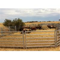 Buy cheap Full Welded 1.6m Hight Animals Cattle Fence Panel / Metal Horse Fence Panels from Wholesalers