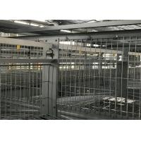 China High Strength Poultry Farm Water System Broiler Watering System Simple Structure factory