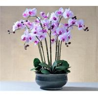 Hot Sell Potted PU Orchids