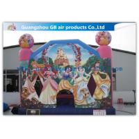 China Dinis Princess Bounce House Childrens Bouncy Castle PVC Material For Kindergarten factory