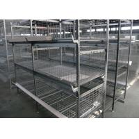China Industrial Broiler Chicken Cage Farming Conventional Cages For Laying Hens factory