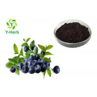 Buy cheap Anthocyanidin European Bilberry Extract Powder 36% Anthocyanosides 25% Anthocyanins from Wholesalers