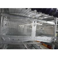 China Breeding 120 Capacity Poultry Cage Equipment ,Poultry Raising Equipment factory