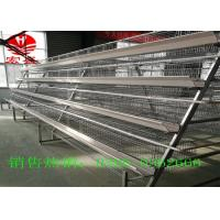China Hot Galvanized Poultry Manure Removal System 5 Tiers Intelligent  Control factory