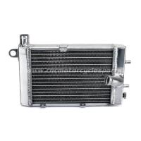 China Aluminum Motorcycle Radiators Leak Repair For APRILIA TUONO 1000 on sale