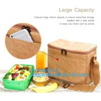 China Custom Eco friendly tyvek Lunch bag Insulated Cooler bag,tyvek kraft paper insulated aluminum foil lunch box bag with sn factory