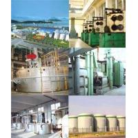 China 10-300Ton/Day Vegetable Oil Mill factory