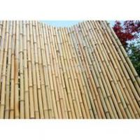 Buy cheap Bamboo Fencing And Bamboo Edging from Wholesalers