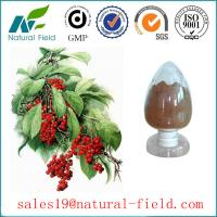 China schisandra chinensis extract 9% schisandrins with CAS:7432-28-2 GMP manufacturer and competitive price factory