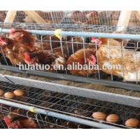 China 2016!!!! low price hexagonal chicken coop wire mesh cage factory