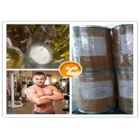 Buy cheap UPS Standard Methyl Stenbolone Muscle Building CAS 5197 58 0 99% Purity from Wholesalers
