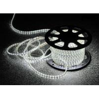 China LED Flexiable strips high brightness addressable Multi color changeable DC12V DC24V factory