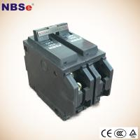 Buy cheap NBSe TQL 2P 60A Plug Fuse Circuit Breaker 10kA 50/60Hz For Household / Automotive from Wholesalers