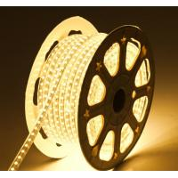 China LED Flexiable strips 8mm PCB width W WW color UcL Approved high brightness addressable factory