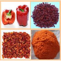 China DRIED RED BELL PEPPER POWDER factory
