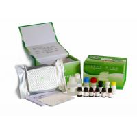H9N1 Bird Flu Veterinary Diagnostic Kits Antigen Coated Microplate For Personal