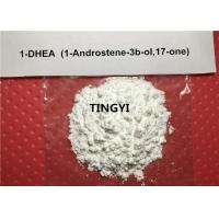 Buy cheap DHEA Powder Prohormones Steroids Dehydroepiandrosterone CAS: 53-43-0 For Bodybuilding from Wholesalers