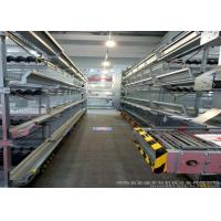 China High Efficiency Egg Collection Systems Easy To Use And Manage For Chickn Farm Used factory