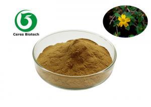 China Pure Natural Damiana Herbal Extract Powder 10/1 50/1 100/1 factory