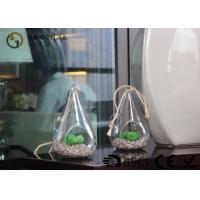 Buy cheap Glass Plant Holders / Glass Plant Terrarium For Indoor Decoration from Wholesalers
