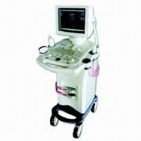 China B-Ultrasound with Finer Image Display, Higher Resolution and Flicker-free VGA 12-inch Monitor factory